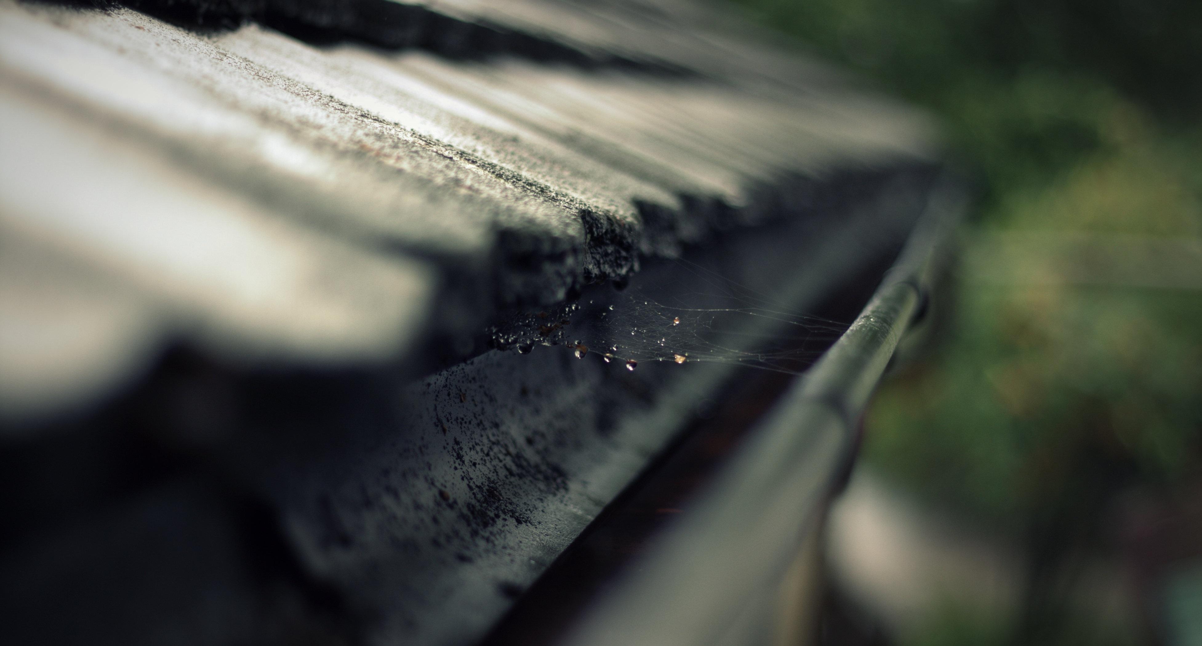 rain-gutter-gutter-roof-cobweb-473845
